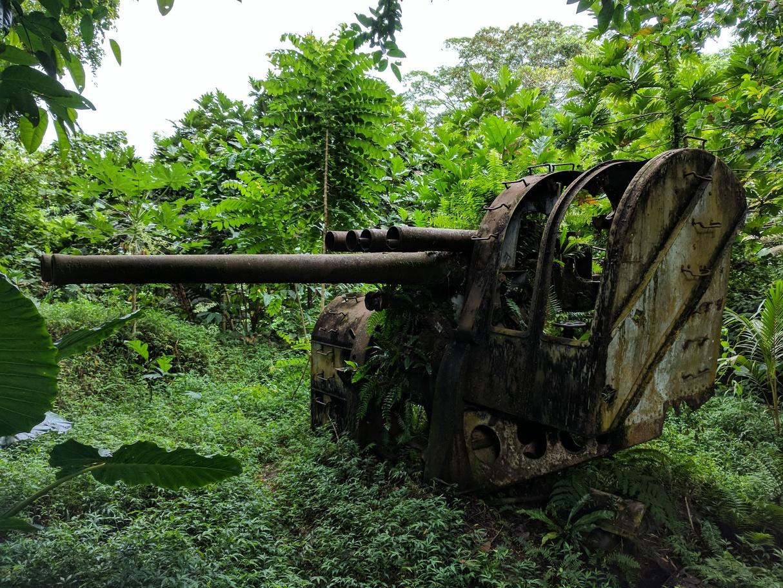 日軍基地大炮